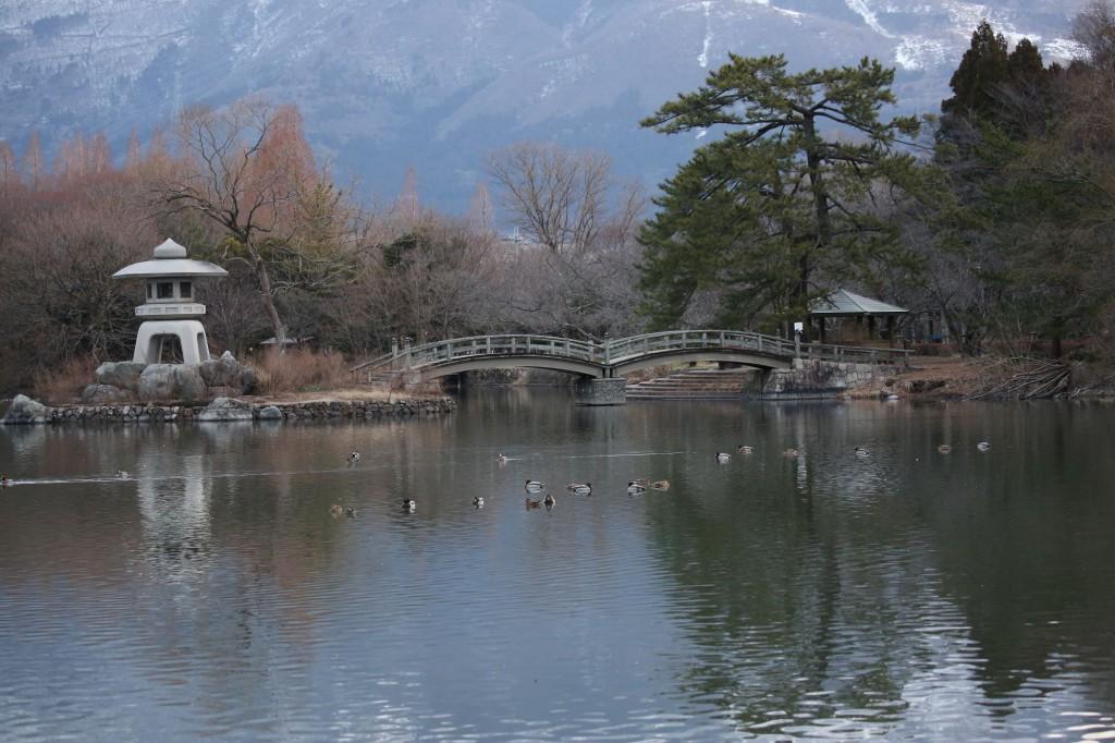 三島池から望む伊吹山