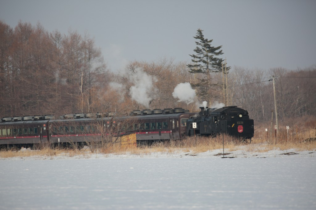 SL 北の湿原号 C11―171