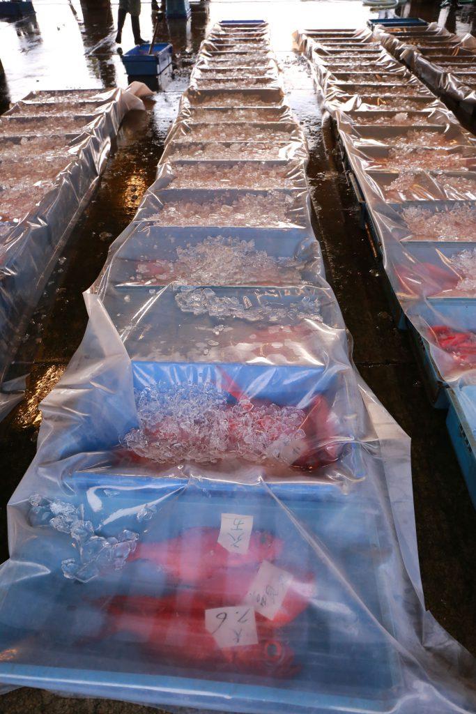 下田魚市場のキンメダイ
